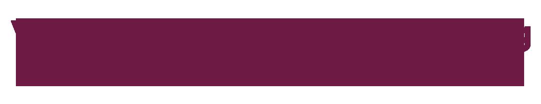 Logo Van Leeuwen Bemiddeling